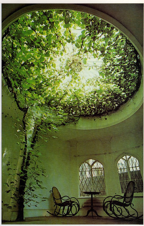 Remarkable Indoor Tree House 610 x 960 · 629 kB · jpeg